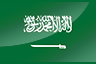 Saudi Arabia National Football Team Apparel Store